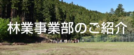 日本自動ドア林業事業部のご紹介